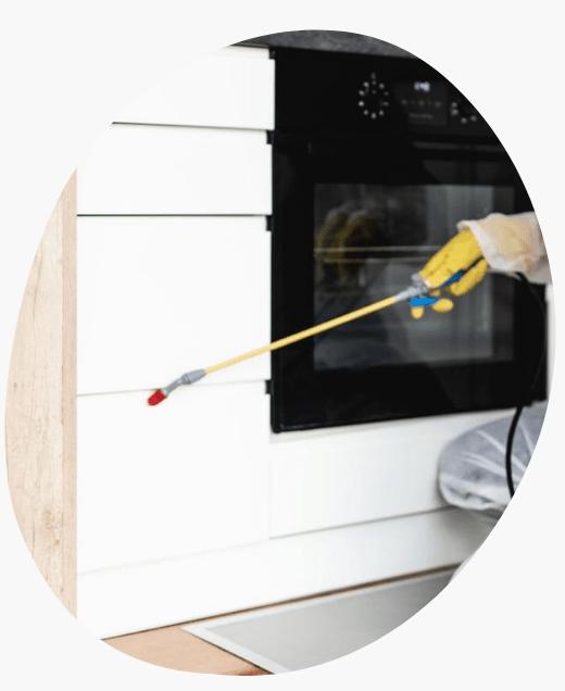Pest Control Service Craigieburn